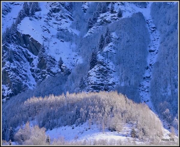 Fionna Valais Suisse