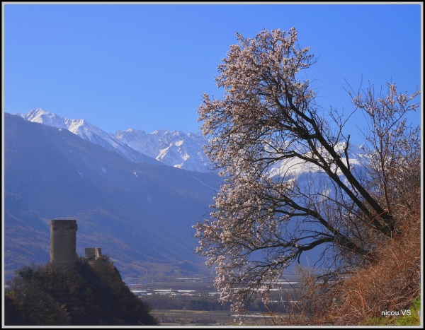 Saillon Valais Suisse