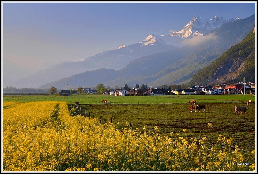 Vionnaz Valais Suisse