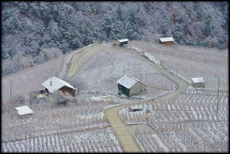 Suisse Valais Bini