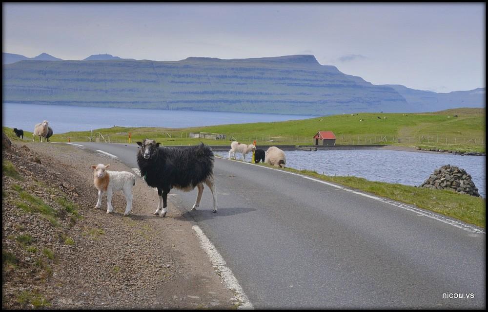 Faroe Islant