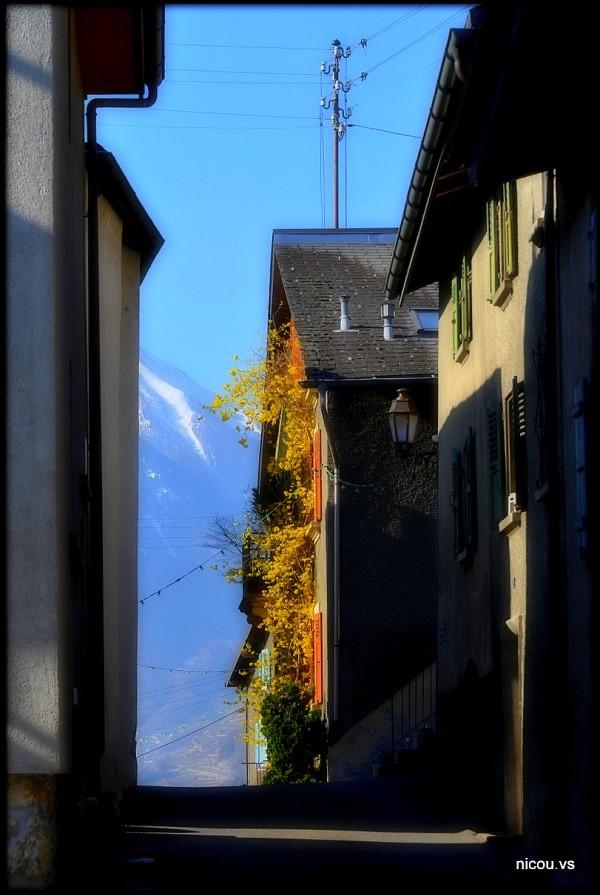 Suisse Valais Branson