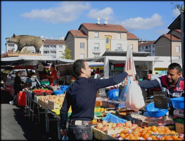 France Bourg en Bresse