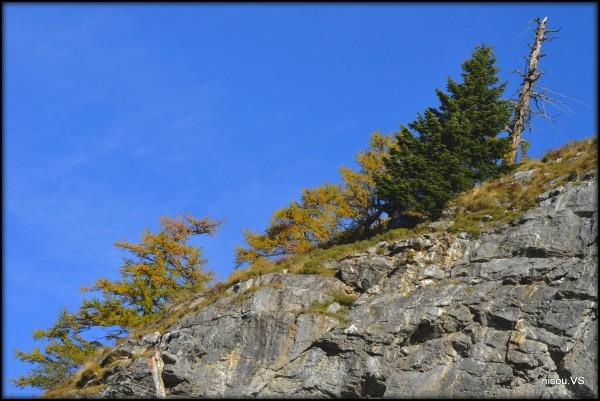 Valais Suisse Saviese