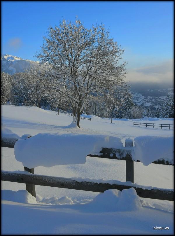 Suisse Valais Arbaz