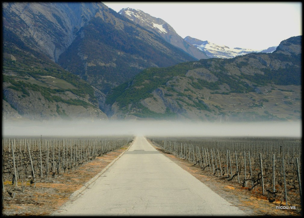 Suisse Valais Ardon