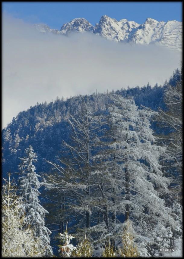 Suisse Valais La Forclaz