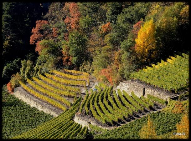 St Léonard Valais Suisse