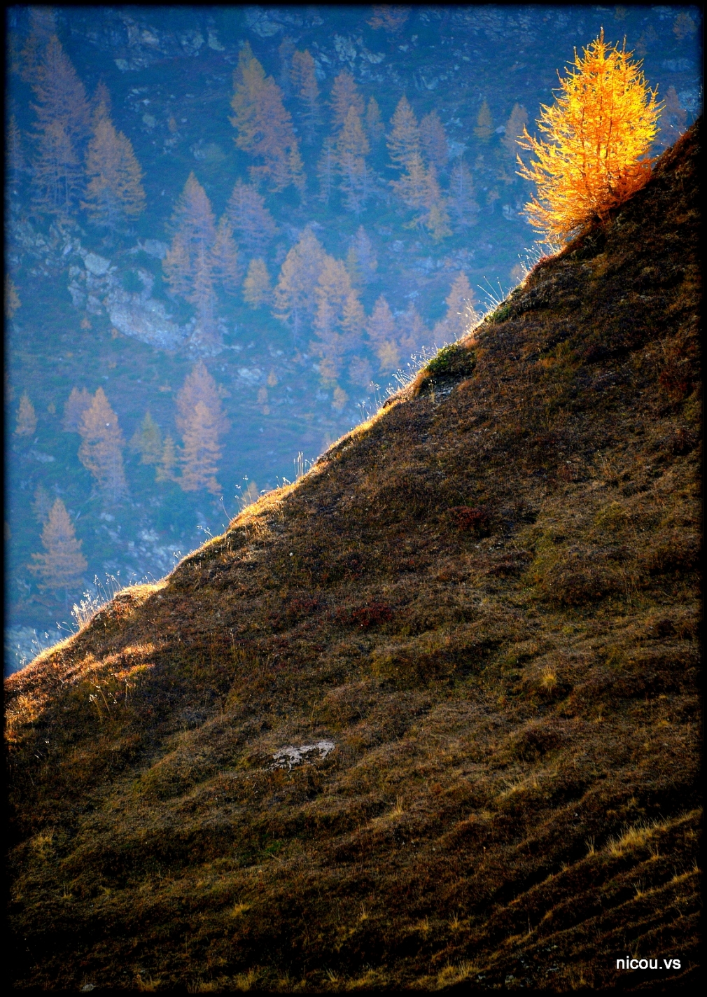 Guttet Valais Suisse