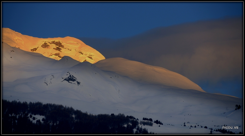 Saviese Valais Suisse