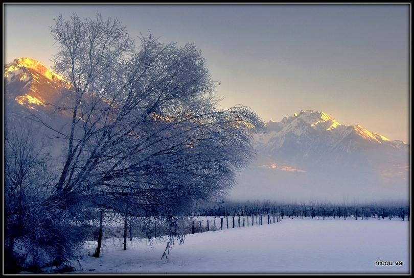 Vétroz Valais Suisse