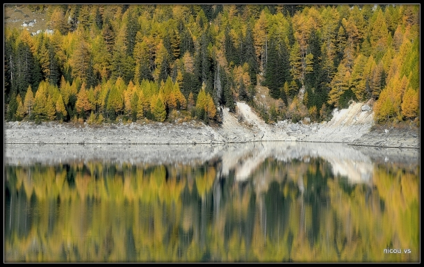 Reflets de mélèzea au barrage de Zeuzier, Valais