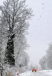 Grimisuat Valais Suisse