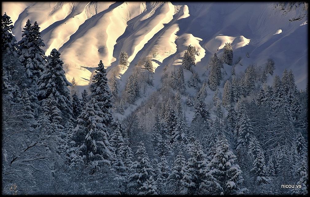 Plans su Bex Vaud Suisse