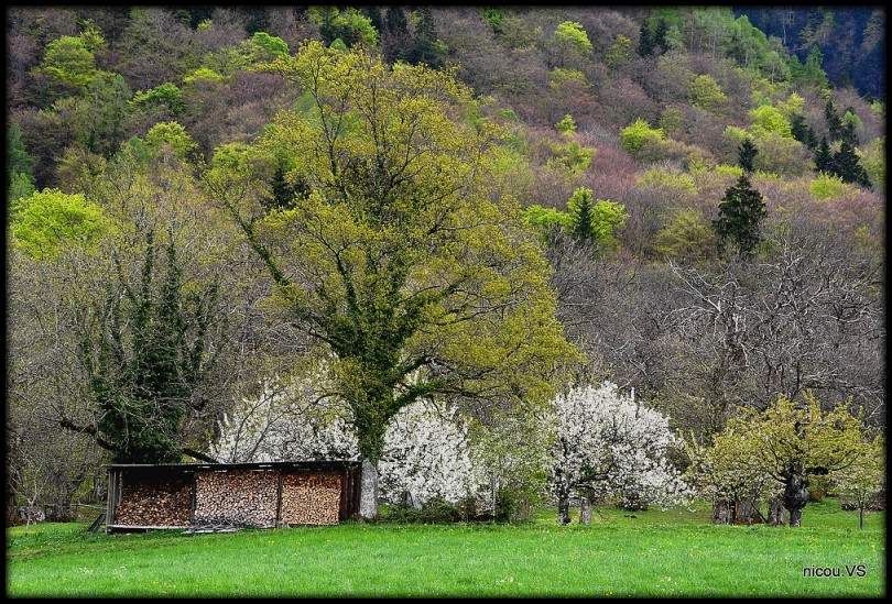 Bex Vaud Suisse