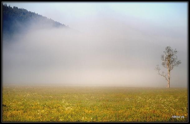Le Sentier Jura Suisse