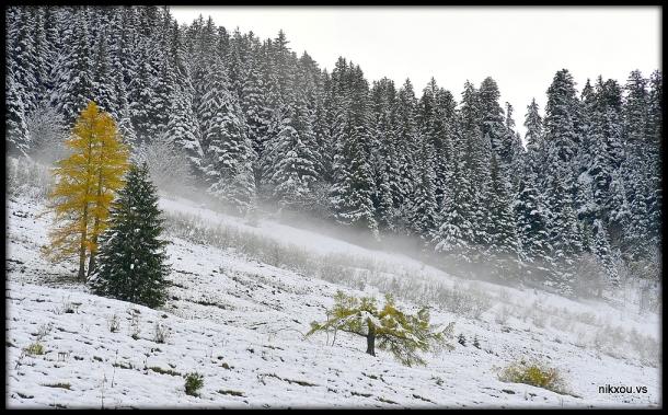 torgon Valais Suisse