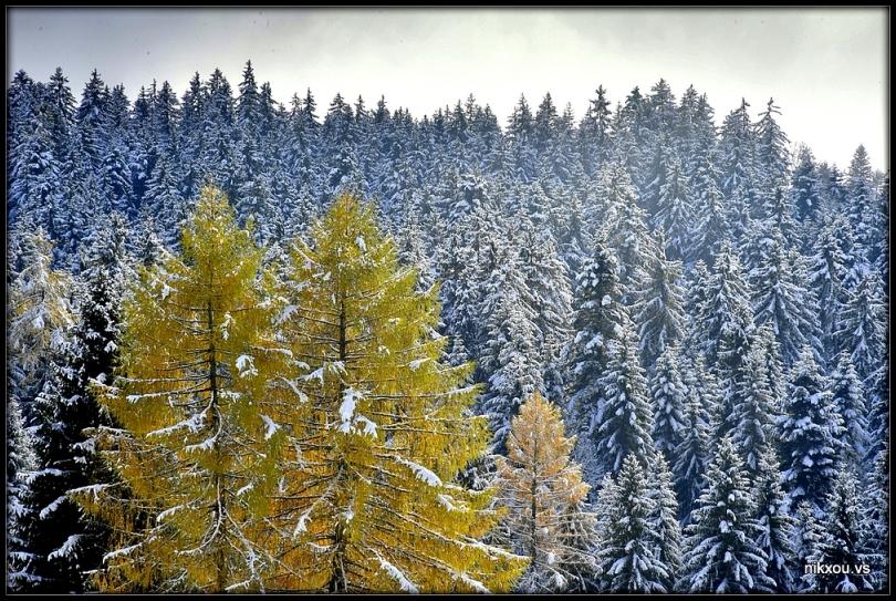 Corbeyrier Vaud Suisse