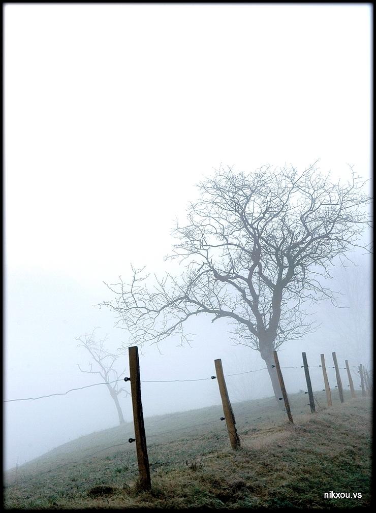 Bec Vaud Suisse
