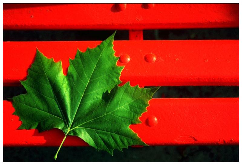 New Canada flag?