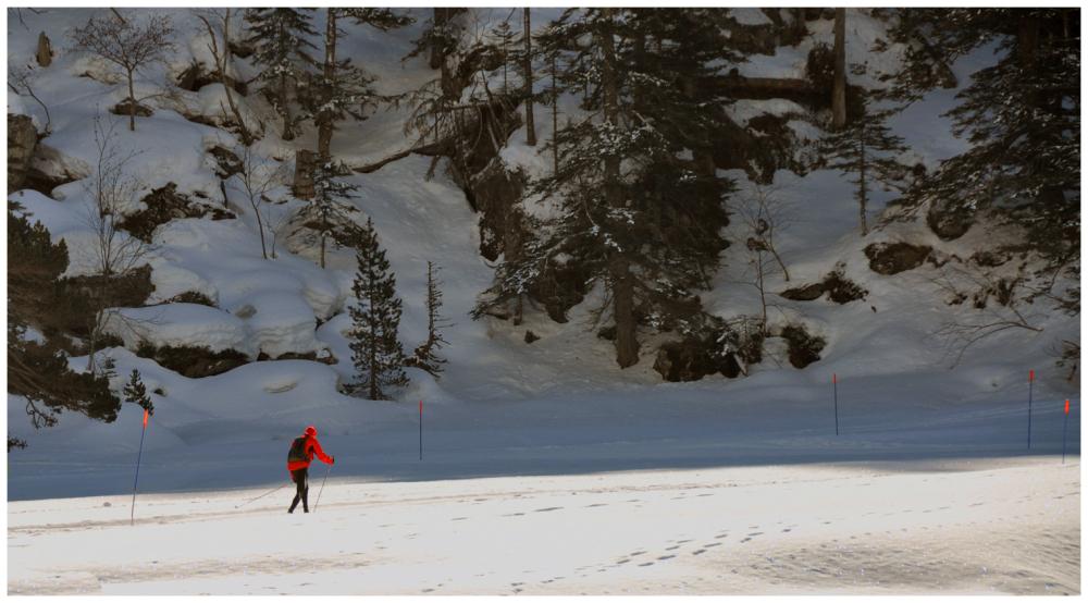 Solitude du skieur de fond
