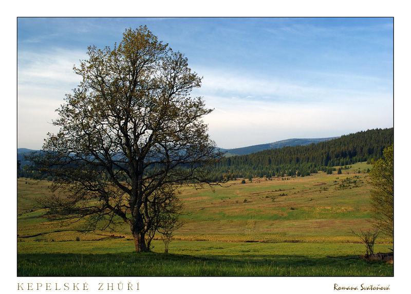 National Park Šumava