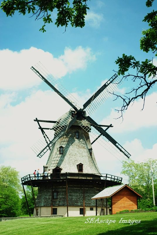 Winsome Windmill