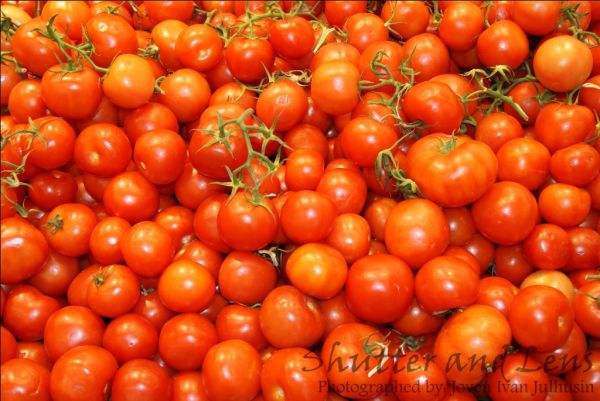Beautifully Cropped Tomatoes