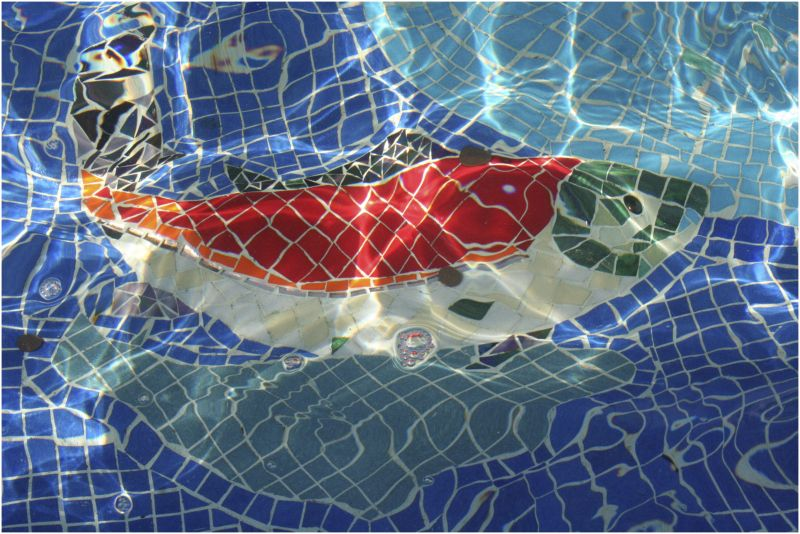 a mosaic fish lit by water