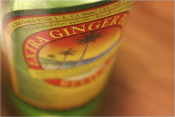 ginger beer bottle label
