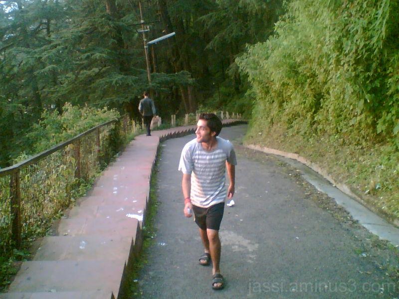 A morning walk in shimla