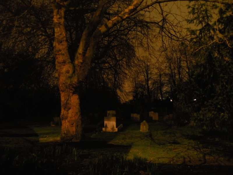 Brompton Cemetery At Night