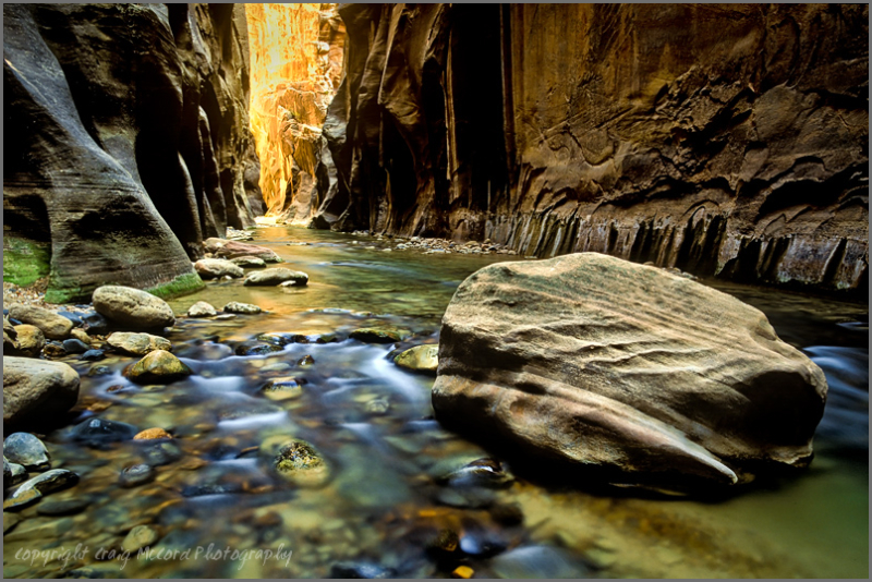 Boulder on the Virgin River, Zion National Park UT