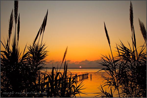 Sunrise on the St. Johns River