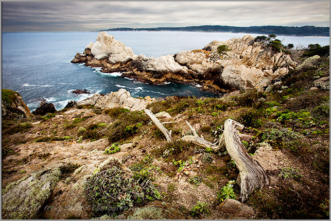 Pinnacle Cove, Point Lobos State Preserve, CA