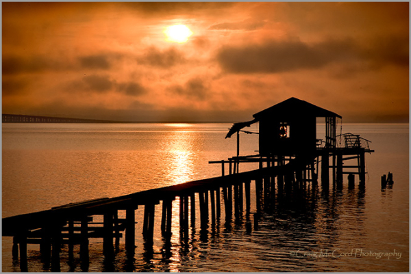 Dock along the St. Johns River, Morning Light