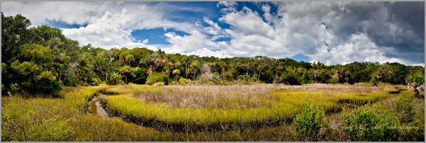 Marshes at Ft. George Island, Northeast Florida
