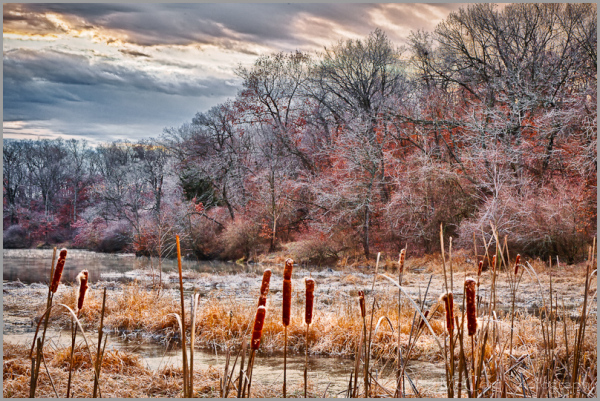 Frosty morning at an inlet of Lake Jacomo