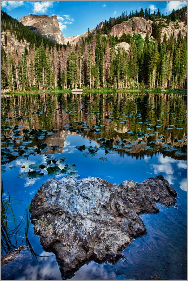 Nymph Lake Reflections