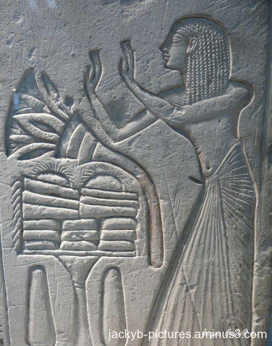 Musée d'égypte