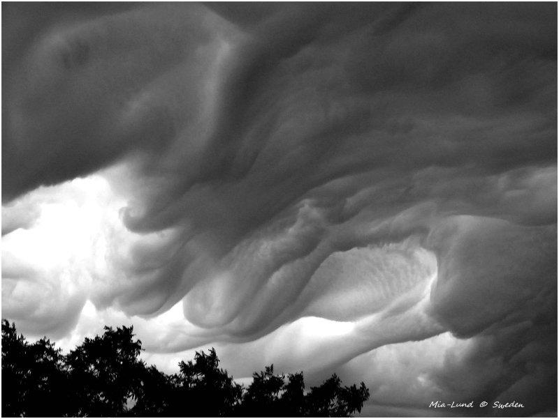 Pic n°2  Sweden Clouds