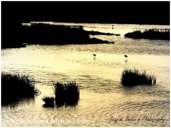 Coucher du soleil dans les marais salants