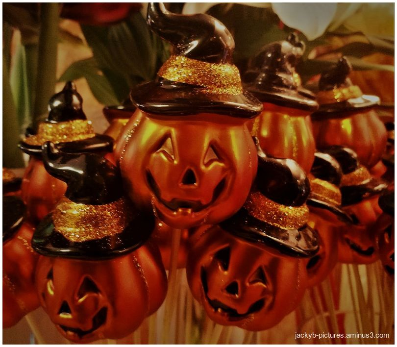 ♥  Nice Halloween  ♥