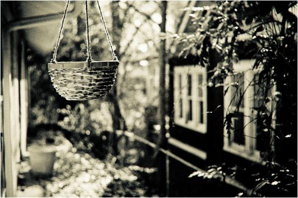 Les chandeliers de fin d'année