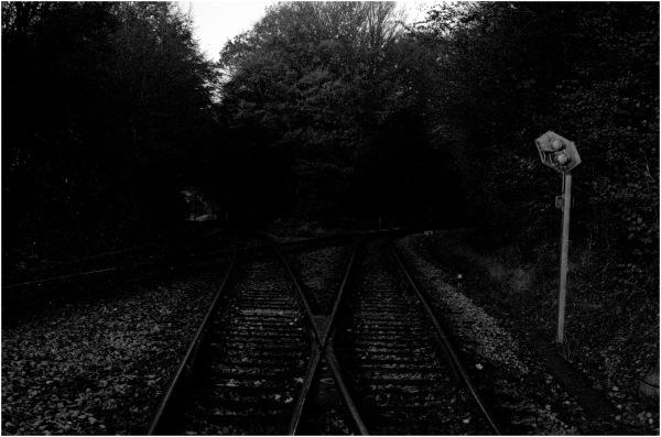 Chemins insoumis