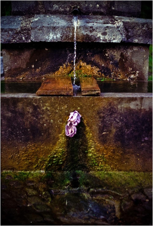 Fontaine de jouvence