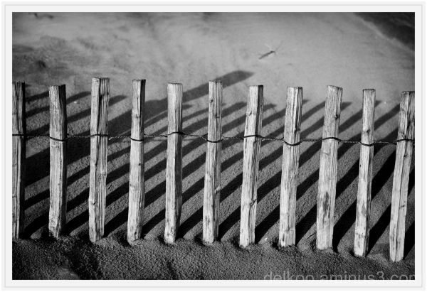 picket, fence,  sand, dune, formation, sea