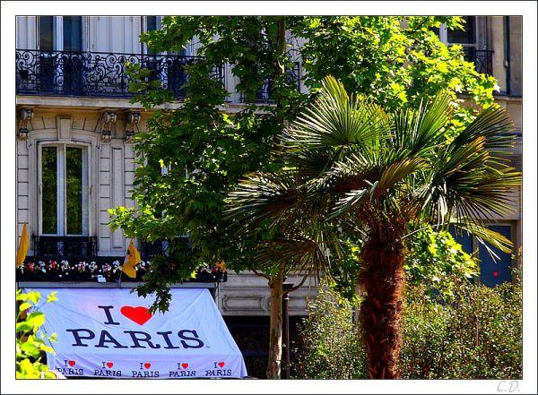 Do you also love Paris ?