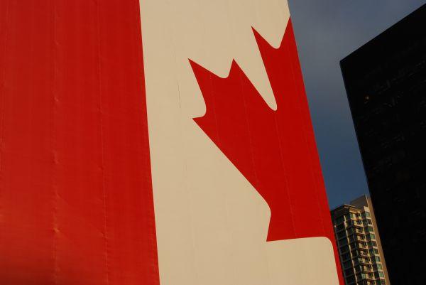 Giant Olympic Flag