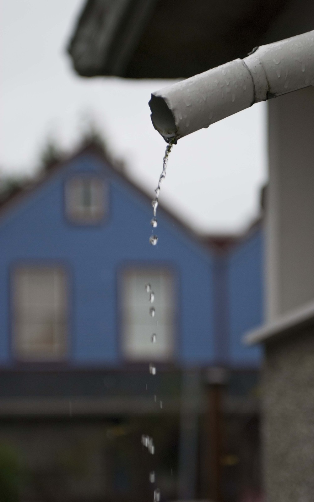 Dripping Drain Pipe